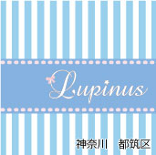 Lupinus ルピナス 都筑区 港北ニュータウン プライベートサロン